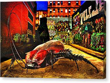 American Cockroach Canvas Print by Bob Orsillo
