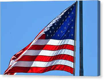 American Flag Canvas Print by P S