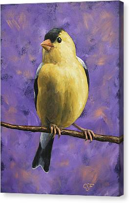 Bird Song Canvas Print - American Goldfinch by Crista Forest