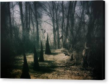 Country Lanes Canvas Print - American Horror Story - Coven by Tom Mc Nemar