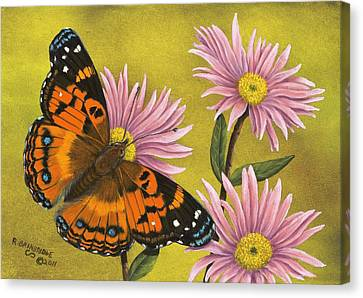 American Painted Lady Canvas Print by Rick Bainbridge