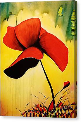 American Poppy Canvas Print by Kyle  Brock