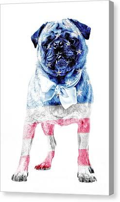 American Pug Canvas Print