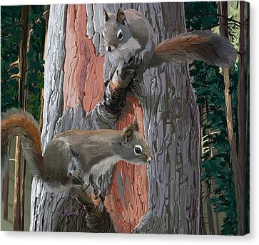 American Red Squirrels Canvas Print