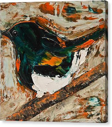American Redstart Canvas Print by Jani Freimann