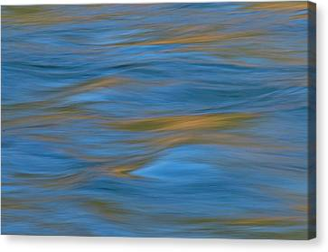 American River Abstract Canvas Print
