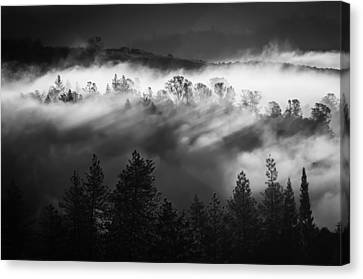 American River Canyon Canvas Print
