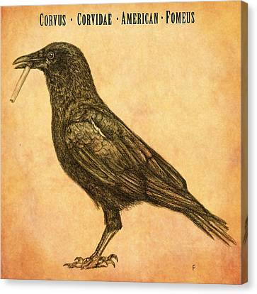 American Smoking Crow Canvas Print by Penny Collins