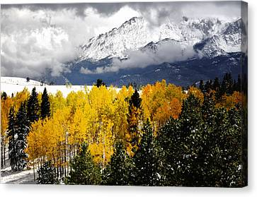 America's Mountain Fall Canvas Print by The Forests Edge Photography - Diane Sandoval
