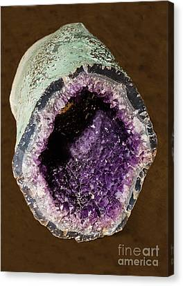 Inorganic Solid Canvas Print - Amethyst Geode by Millard H. Sharp