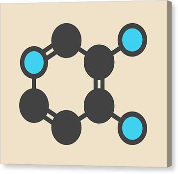 Amifampridine Molecule Canvas Print by Molekuul