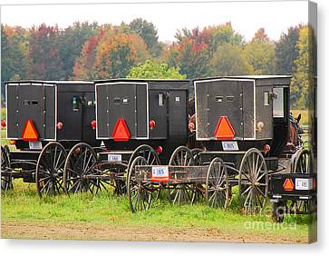 Amish Buggies 2 Canvas Print by Mary Carol Story