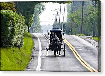 Amish Buggy In Lancaster County Pa. Canvas Print by Bill Cannon
