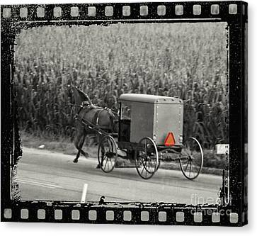 Amish Buggy Monochrome Canvas Print by Terry Weaver