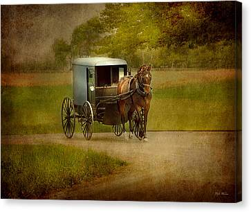Canvas Print featuring the photograph Amish Buggy Ride by Dyle   Warren