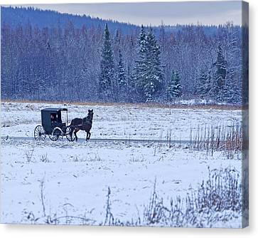 Amish Carriage Canvas Print by Jack Zievis