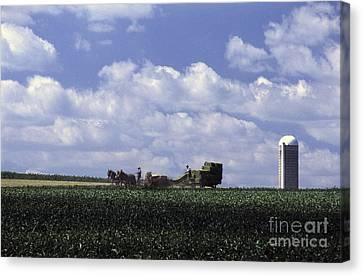 Amish Country Canvas Print by Paul W Faust -  Impressions of Light
