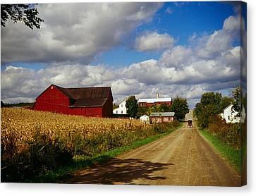Amish Farms Canvas Print - Amish Farm Buildings And Corn Field by Panoramic Images