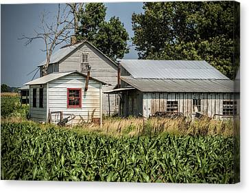 Amish Farm In Tennessee Canvas Print by Kathy Clark