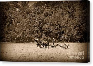 Amish Farmer Tilling The Fields In Black And White Canvas Print by Paul Ward
