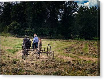Amish Canvas Print - Amish Farming by Tom Mc Nemar