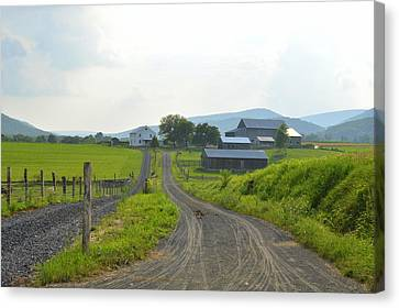 Amish Farmstead #1 - Siglerville Pa Canvas Print