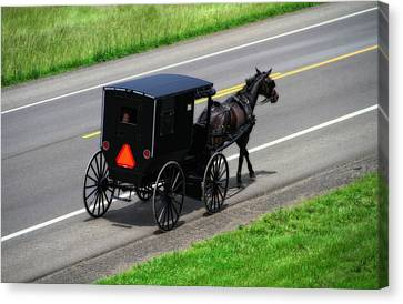 Amish Horse And Buggy In Ohio Canvas Print by Dan Sproul