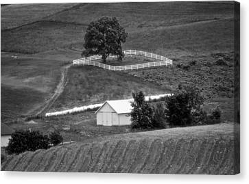 Amish Land Canvas Print
