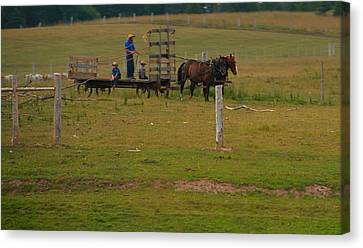 Amish Man And Two Sons On The Farm Canvas Print by Dan Sproul