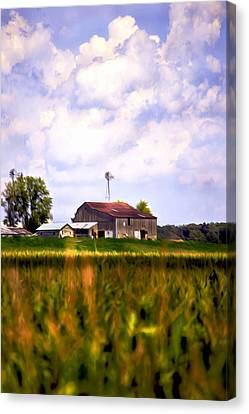 Cornfield Canvas Print - Amish Paradise by Brenda Harrah