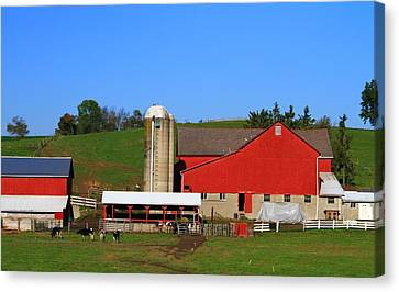 Amish Red Barn Canvas Print by Dan Sproul