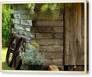 Amish Wood Shed Canvas Print by Lena Wilhite
