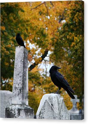 Blackbirds Among The Autumn Colors Canvas Print by Gothicrow Images