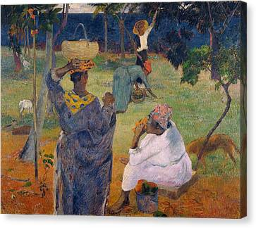 Among The Mangoes At Martinique Canvas Print by Paul Gauguin
