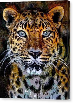 Amur Leopard Stare Canvas Print by Ernie Echols