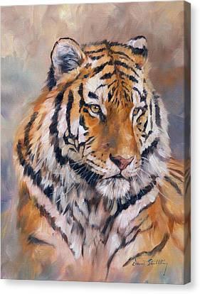 Amur Tiger Canvas Print by David Stribbling