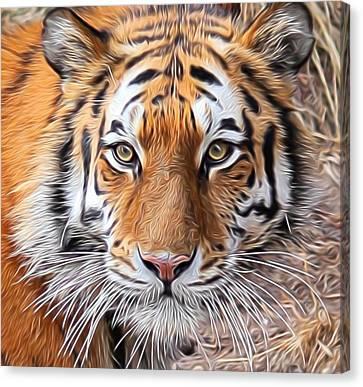 Amur Tiger Portrait Canvas Print by Diane Alexander