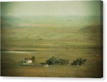 An Abandoned Farmhouse Canvas Print by Roberta Murray