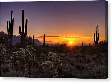 An Arizona Winter Sunrise Canvas Print