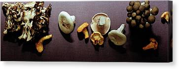An Assortment Of Mushrooms Canvas Print by Romulo Yanes