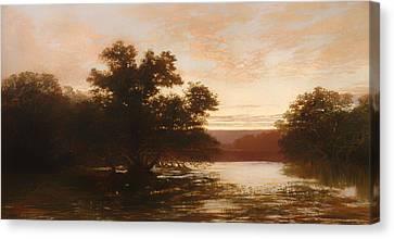 An Australian Mangrove Canvas Print