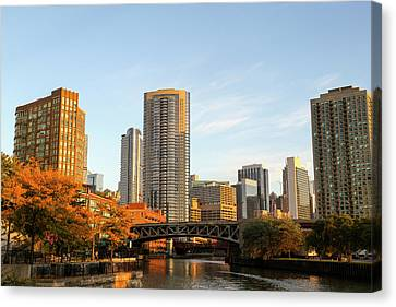 Chicago River Canvas Print - An Autumn View From The Chicago River by Susan Pease