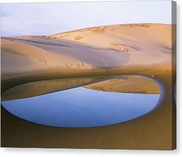 An Ephemeral Pond Mirrors The Umpqua Canvas Print by Robert L. Potts
