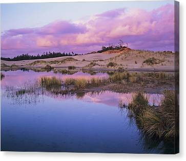An Ephemeral Pool Reflects The Morning Canvas Print by Robert L. Potts