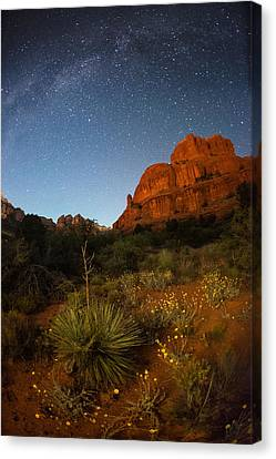 Copyright 2013 By Mike Berenson Canvas Print - An Image Of Seasonal Confusion In Arizona by Mike Berenson