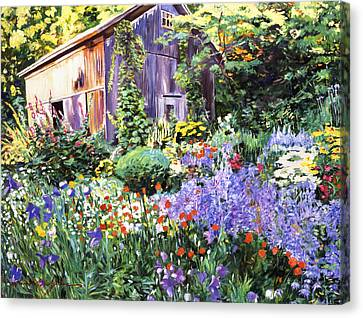 An Impressionist Garden Canvas Print by David Lloyd Glover