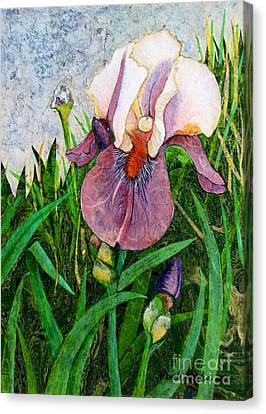 An Iris For Lily Canvas Print by Pamela Iris Harden