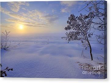 An Ocean Of Snow Canvas Print