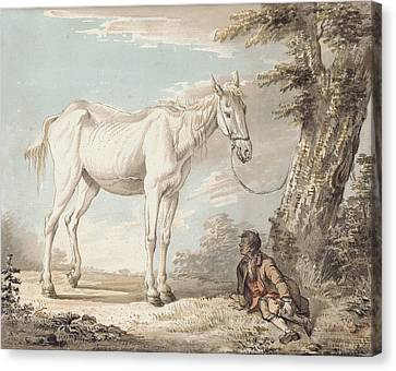 An Old Grey Horse Tethered To A Tree A Boy Resting Nearby Canvas Print by Paul Sandby