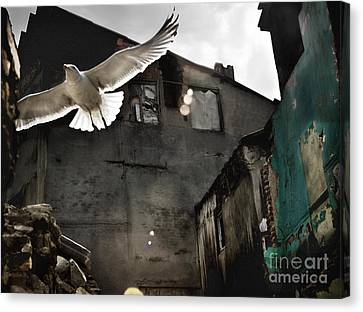 Canvas Print featuring the photograph An Unexpected Messenger by Michel Verhoef